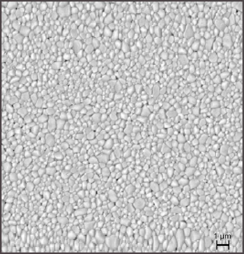 Abbildung 2: feinere Gefügestruktur durch den Zusatz von nano-MgF<sub>2</sub> - REM Aufnahme<br>