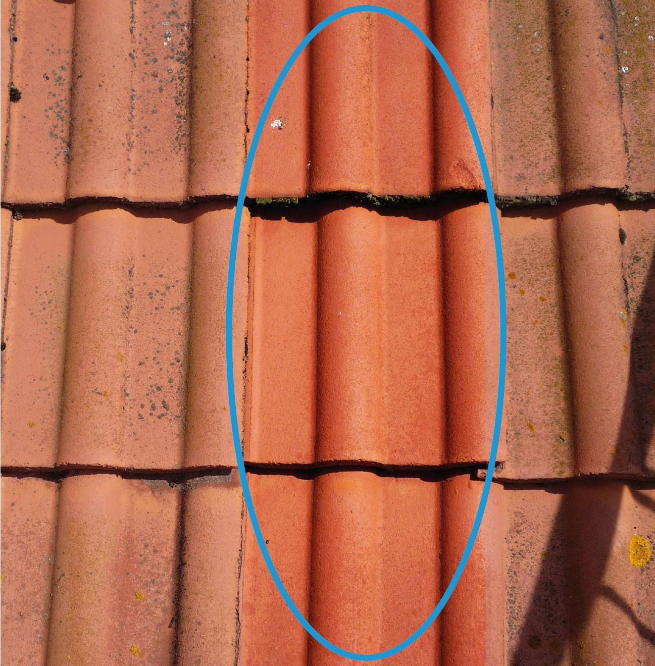 Abbildung 4: Mit CaF<sub>2</sub> imprägnierte Dachziegel (blauer Bereich) im Vergleich zu unbehandelten Ziegel (Zeitraum 2 Jahre)
