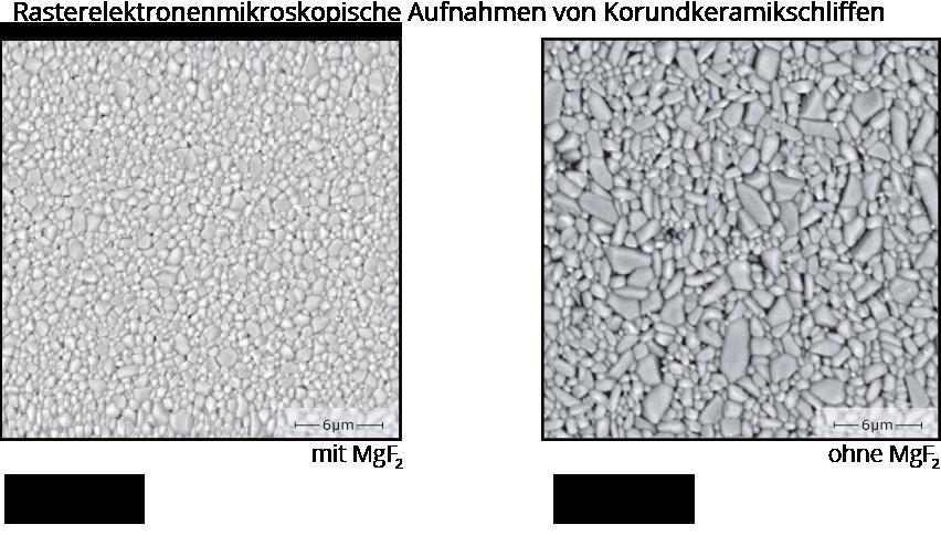 Abbildung 4: veränderte - feinere - Gefügestruktur durch den Zusatz von nano-MgF<sub>2</sub> - REM Aufnahme<br>